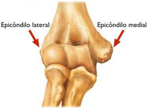 Epicondilite  - Osso úmero onde se encontram os epicôndilos